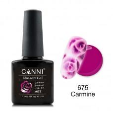 Blossom Gel-Carmine 675