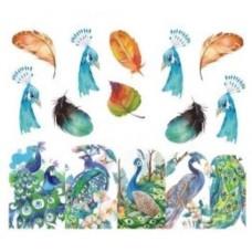 """Ваденка """"Peacock""""-1206"""