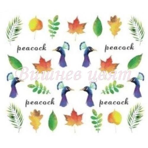 """Ваденка """"Peacock""""-1212"""